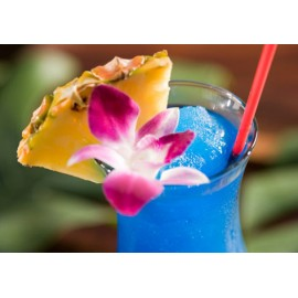 HOSTELVIA Copa Blue Hawaii 47cl